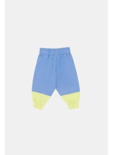BG Baby Erkek Bebek Renkli Eşofman Altı Renkli